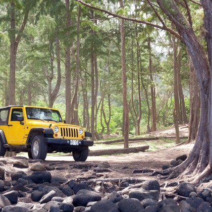 Jeep in Waipio Valley