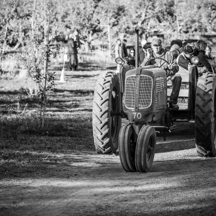 Minnetonka Orchards Tractor Ride