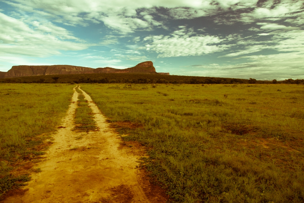 South Africa Open Road