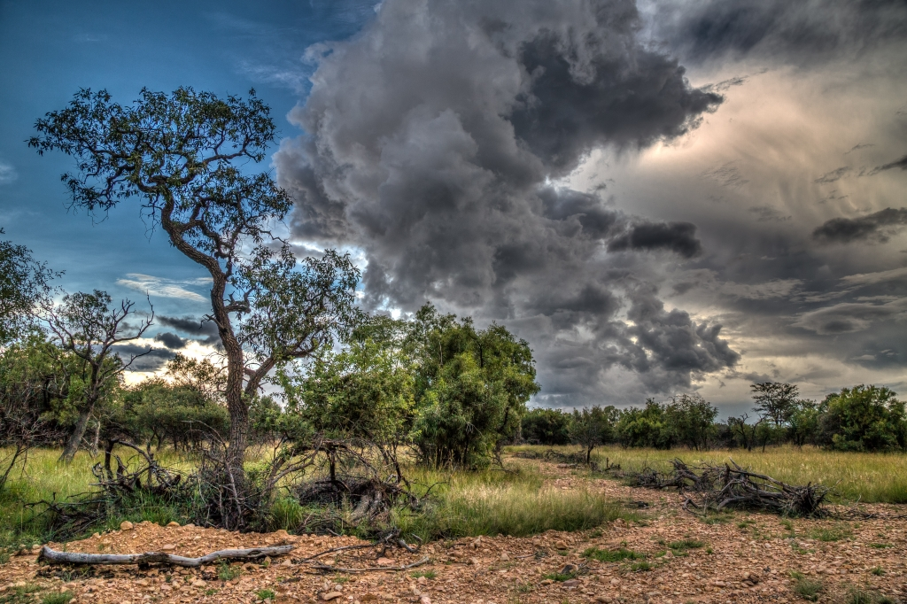 A storm front quickly approaches over Shikwaru Ranch, South Africa.